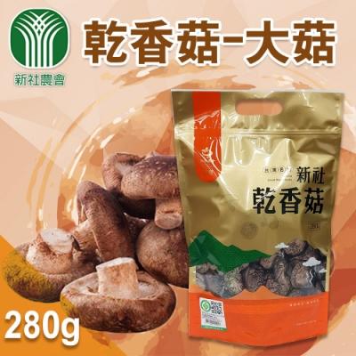 【新社農會】乾香菇-大菇  (280g / 包  x2包)