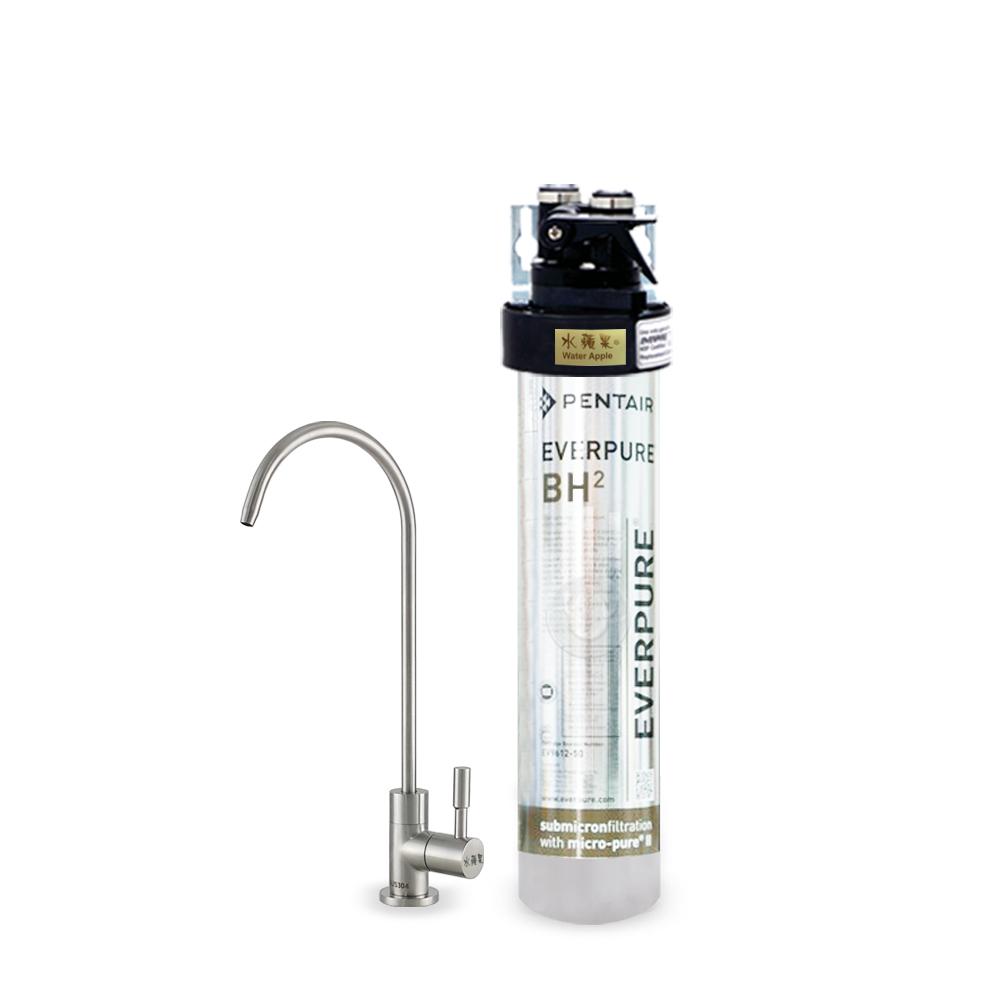水蘋果公司貨 EVERPURE QL3-BH2 單道淨水器