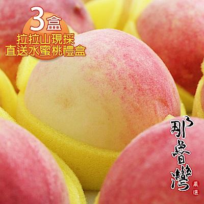 那魯灣 拉拉山現採直送水蜜桃禮盒 3盒(10粒/2.5台斤/盒)