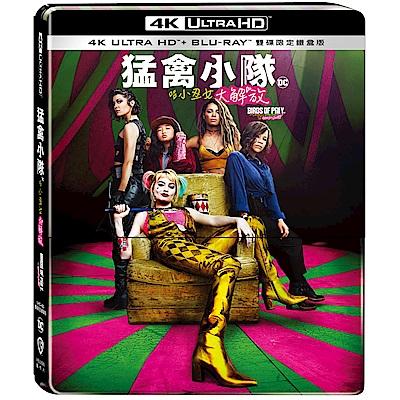 猛禽小隊:小丑女大解放 4K  UHD + BD 雙碟限定鐵盒版