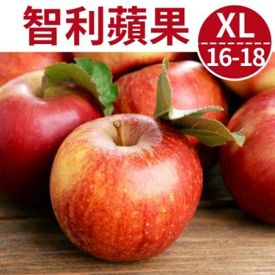[甜露露]智利富士蘋果XL 16-18入