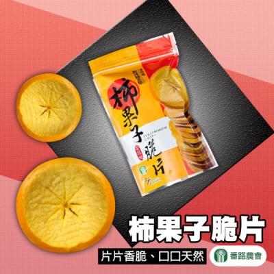 【番路農會】柿果子脆片 ( 120g / 包  x3包)