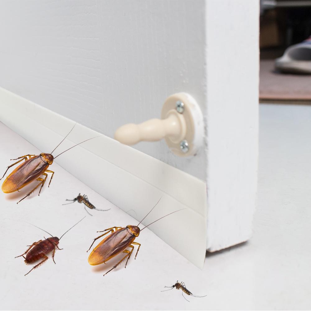 樂嫚妮 DIY 防蟲門縫/門窗密封條-5米-白色