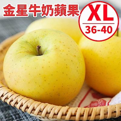 [甜露露]青森金星牛奶蘋果XL 36-40顆入原裝箱(10kg)