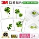 3M 防滑貼片-植物 (24片入) product thumbnail 1