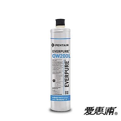 EVERPURE 愛惠浦 公司貨 OW200L淨水濾芯