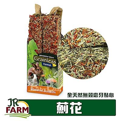 德國JR FARM-草本種籽棒-薊花/寵物鼠兔全天然無穀磨牙點心140g-08158