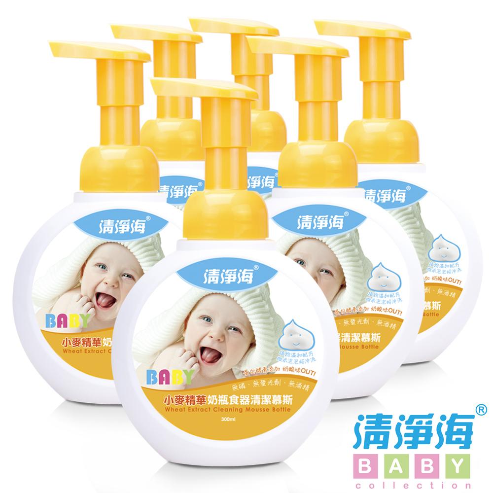 清淨海 BABY系列小麥奶瓶食器清潔慕斯 300ml(箱購6入組)