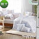 Tonia Nicole東妮寢飾 葉影沉香環保印染100%萊賽爾天絲被套床包組(特大)