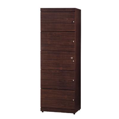 綠活居 普戈時尚2尺五門書櫃/收納櫃(二色可選)-60x42x175.5cm免組