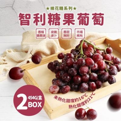 築地一番鮮-智利糖果葡萄2盒(454g±10%/盒)