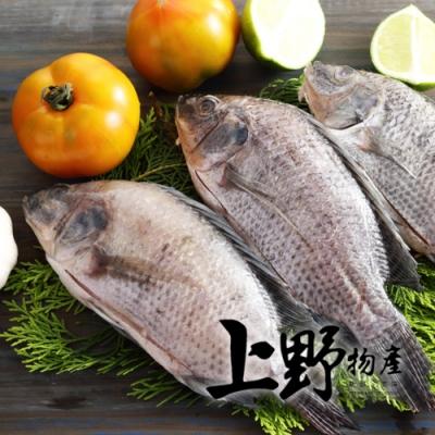 (滿899免運)【上野物產】嚴選台灣鯛魚 x1隻(250g土10%/隻)