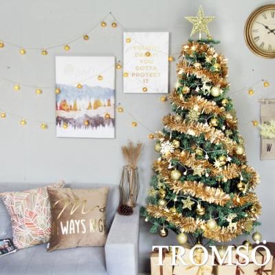 TROMSO 2019北歐聖誕樹-巴黎香榭金