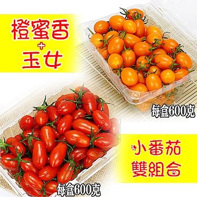 愛蜜果 橙蜜香1盒+玉女1盒(小番茄/600克/每盒)