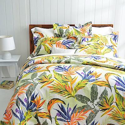 Cozy inn 天堂-綠 雙人四件組 300織精梳棉薄被套床包組