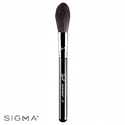 Sigma F37-柔軟打亮刷 Spotlight Duster