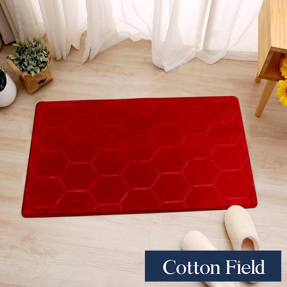 棉花田 威力 超細纖維吸水防滑踏墊-4色可選(二件組)