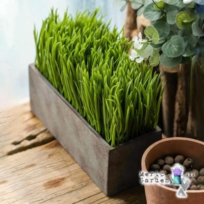 【Meric Garden】創意北歐仿真大麥草長方復古水泥盆栽