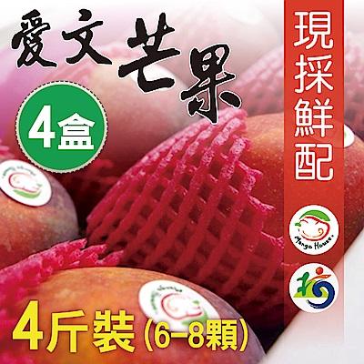 Mango House 枋山愛文芒果 4斤x4盒(6~8顆/盒) 輸日等級蘋果檨