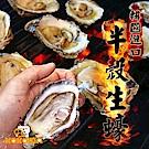 (任選) 極鮮配 韓國進口半殼生蠔 10顆入(約10cm左右)