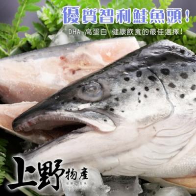 (滿899免運)【上野物產】大規格智利半切鮭魚頭 x1包(500g土10%/份)