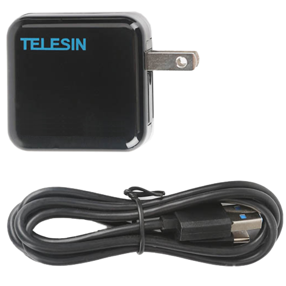 TELESIN GoPro Hero 5 6 7 適用USB雙口充電器 (含Type-C 線)
