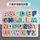 經典木玩 馬卡龍經典學習拼圖(兒童教育玩具)36m+
