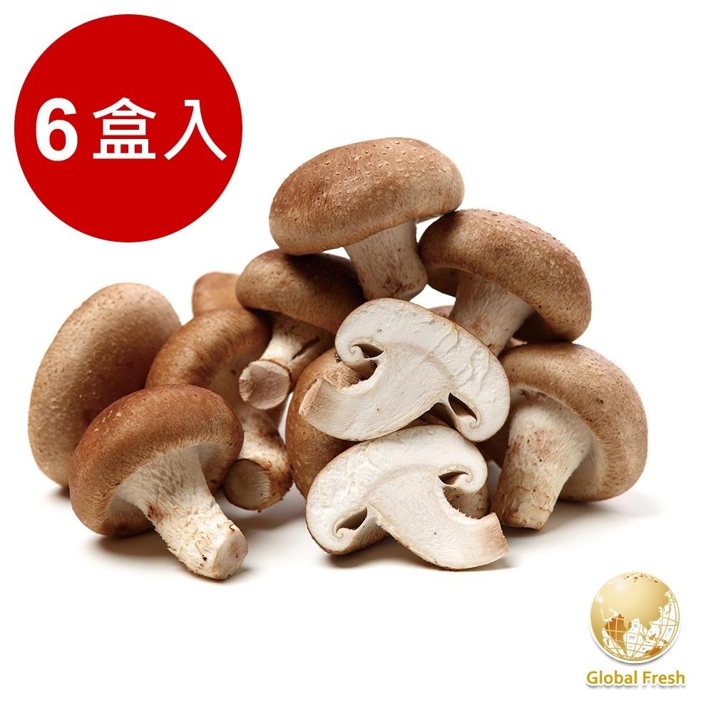 Global Fresh 肉厚鮮嫩埔里鮮香菇 (150g/盒,6盒/箱)