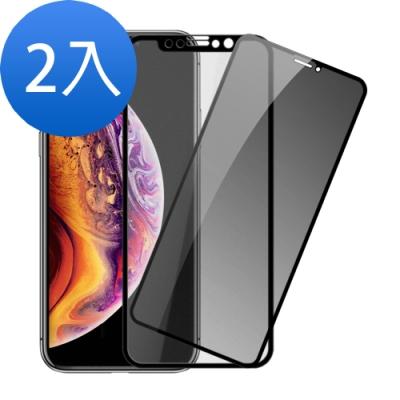 iphone XS Max 9H鋼化玻璃膜-超值2入組(霧面/防窺)