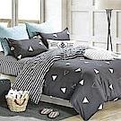 LAMINA 清新時光 加大四件式 柔絲絨兩用被床包組