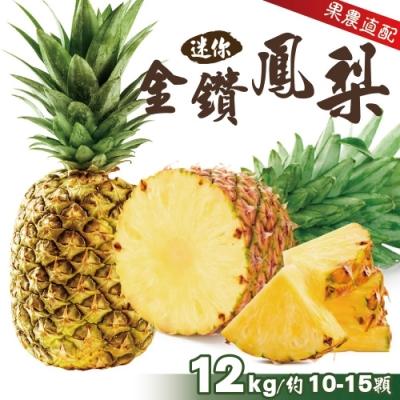 顧三頓-迷你金鑽鳳梨原裝x1箱(每箱10-15入約12kg±10%)