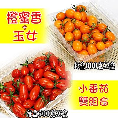 愛蜜果 橙蜜香3盒+玉女3盒(小番茄/600克/每盒)