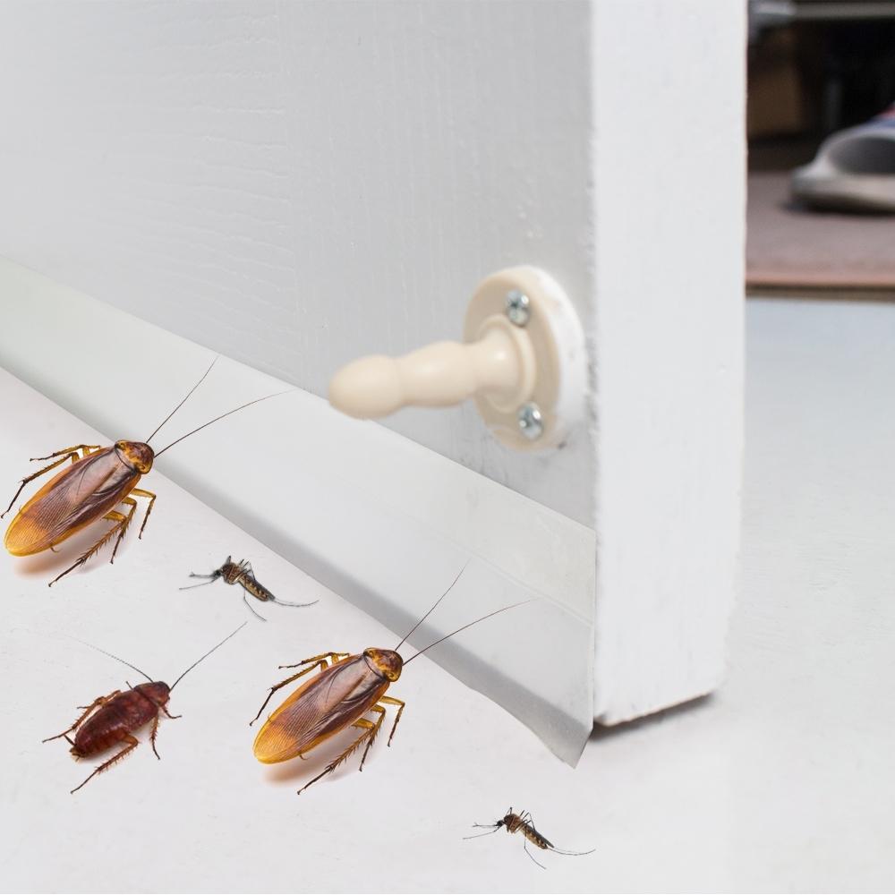 樂嫚妮 DIY 防蟲門縫/門窗密封條/5米- 半透明