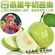 【果農直配】燕巢牛奶珍珠芭樂10斤(含箱重/16-25顆) product thumbnail 1
