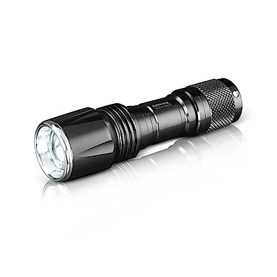RONEVER PA-NICHIA319-1 319-1伸縮變焦手電筒-白光