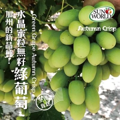 【天天果園】Autumn Crisp美國水晶蜜粒無籽綠葡萄2盒(每盒約500g)