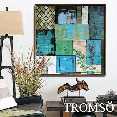 TROMSO北歐風尚板畫有框畫-翡翠時代60X60CM