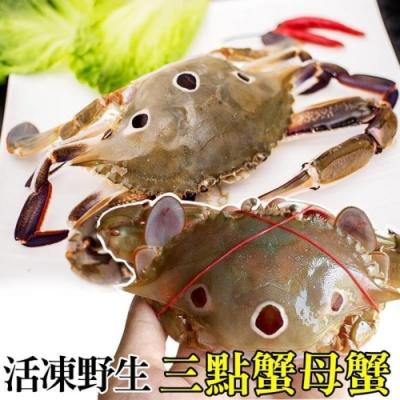 買6送6【海陸管家】活凍野生三點母蟹 共12隻(每隻約100g-150g)