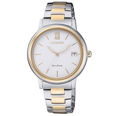 CITIZEN 星辰光動能簡約時尚手錶FE6094-84A-半金/34mm