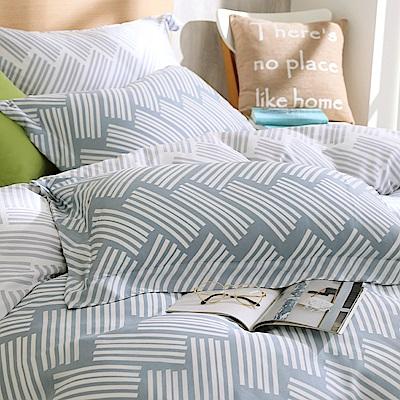 鴻宇 歐式壓框薄枕套2入 天絲300織 米克諾斯 台灣製