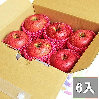 【鮮果日誌】日本空運青森蜜蘋果 (6入禮盒裝)