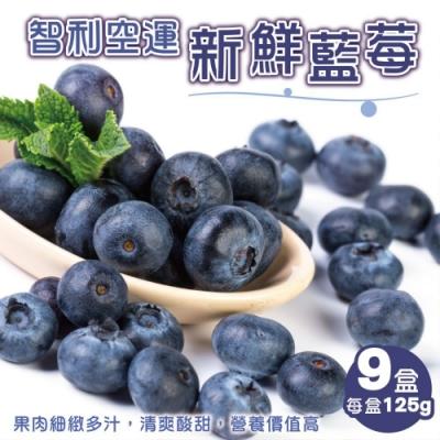顧三頓-智利空運新鮮藍莓x9盒(每盒125g±10%)