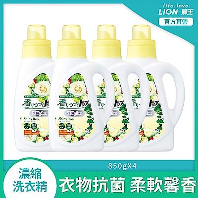 買2送2!破盤4折↘日本獅王LION 香氛柔軟濃縮洗衣精 抗菌白玫瑰 850g,共4瓶!