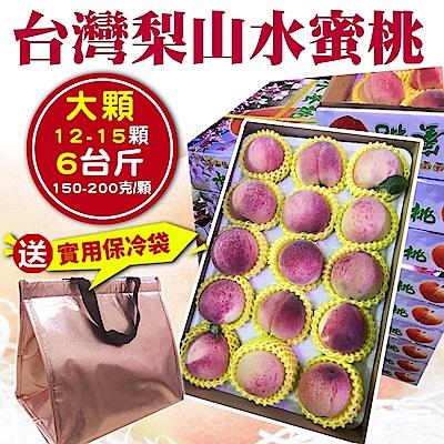 【天天果園】台灣大顆梨山水蜜桃 x6台斤(12-15顆/送時尚保冷袋)
