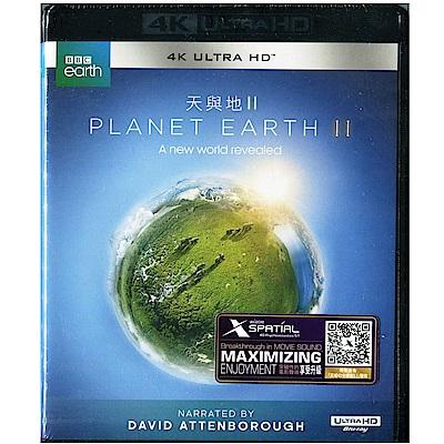 地球脈動2 (天與地2) UHD 雙碟版