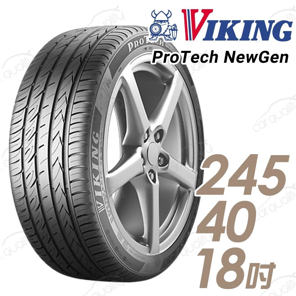 【維京】PTNG 濕地輪胎_送專業安裝_單入組_245/40/18 97Y(PTNG)