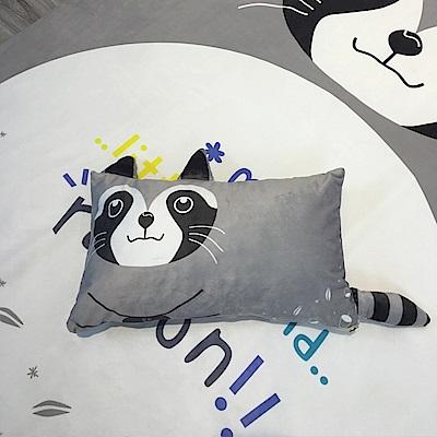 HUEI生活提案 水晶絨 可拆洗動物造型造型枕 浣熊