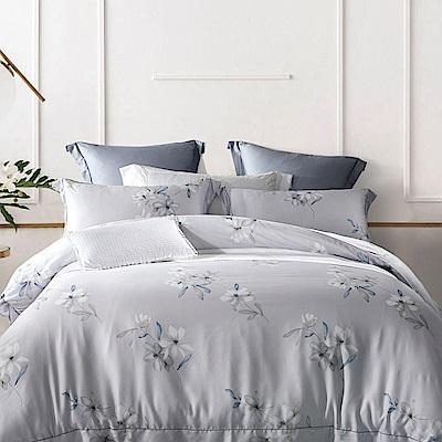 Lily Royal 100支尊爵天絲 四件式兩用被床包組 加大 歡顏