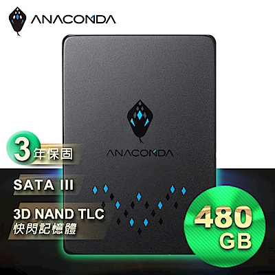 ANACOMDA巨蟒 TS  480 GB 固態硬碟
