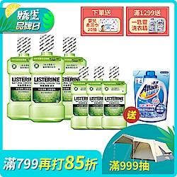 (6入)綠茶防蛀護齦漱口水